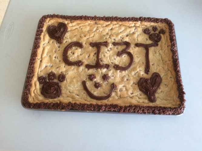Ci3T Cookie Cake