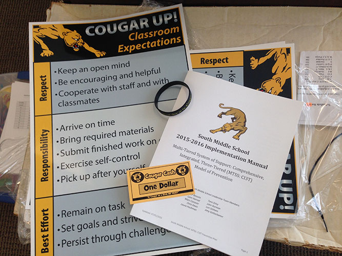 Cougar Expectation Matrix