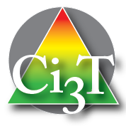 Ci3T pyramid with grey circle for website