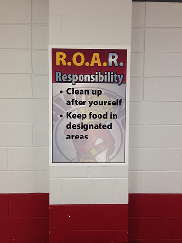 ROAR Responsibility examples