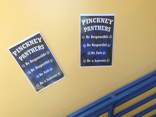 Pinckney Panthers expectations