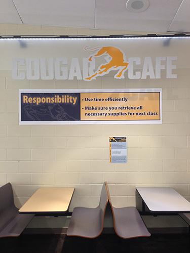Cougar Cafe Poster